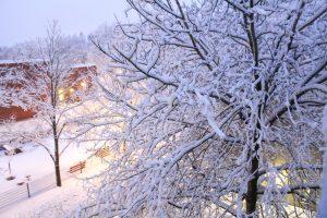 climate seasons